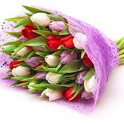 mazzi di fiori bellissimi