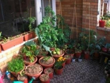 giardino in balcone giardino in terrazzo
