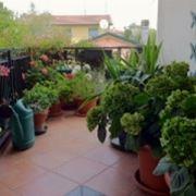 giardinoterrazzo
