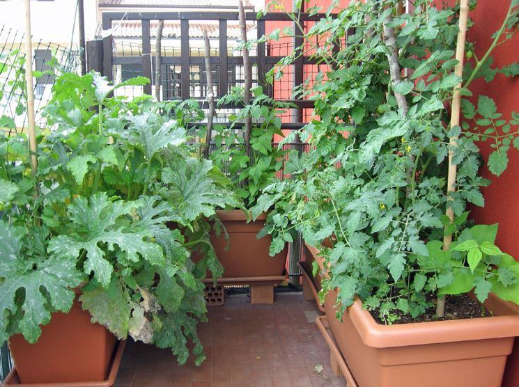 Orto in balcone - Giardino in terrazzo - Come realizzare un orto in ...