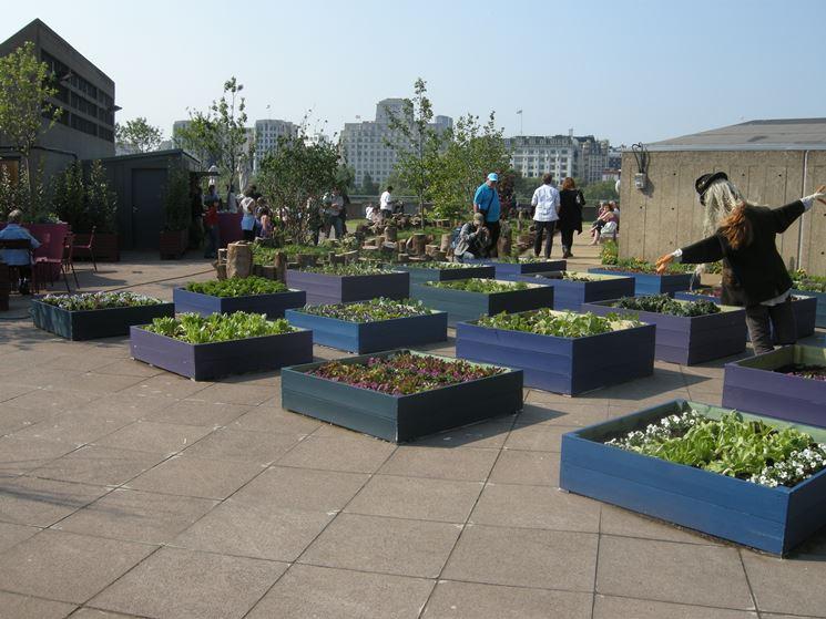 Orto pensile giardino in terrazzo caratteristiche dell - Giardino pensile terrazzo ...