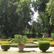 giardinotorrigiani
