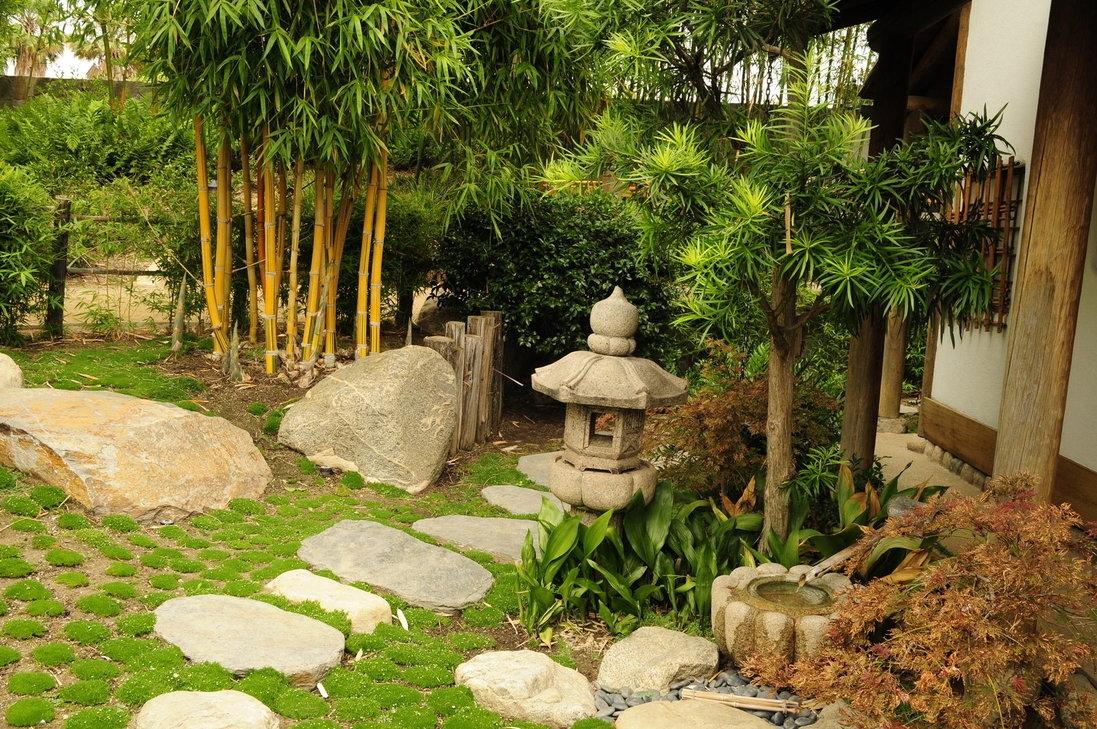 piccoli giardini - Parchi e Giardini